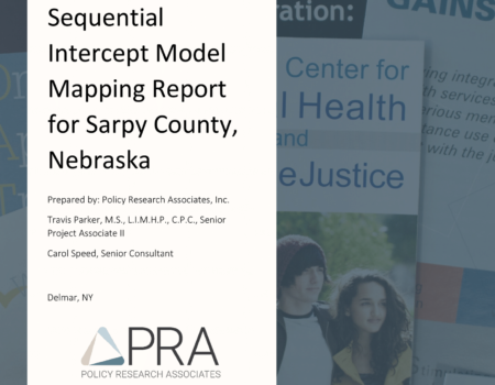Sarpy County SIM Report Cover